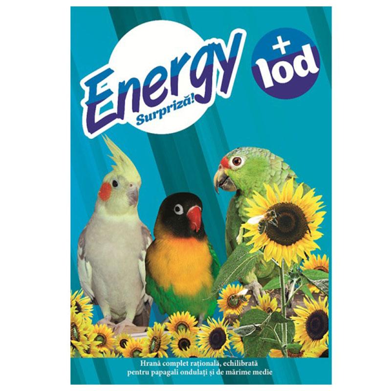 Полнорационный сухой корм для волнистых попугаев - Energy 500г Кишинев