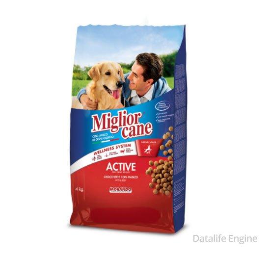 Сухой корм для активных собак с говядиной Active 4 кг Кишинев