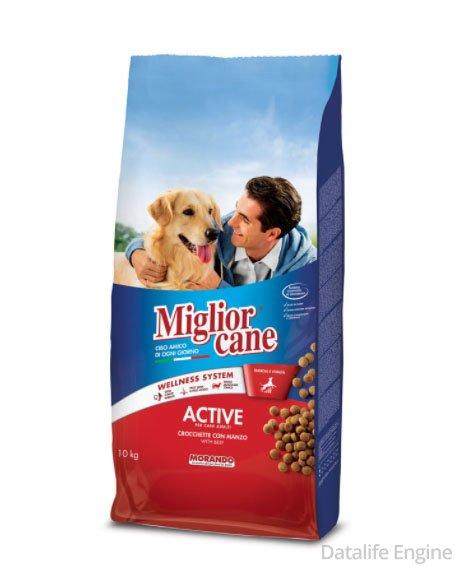 Сухой корм для активных собак с говядиной Active 10 кг Кишинев