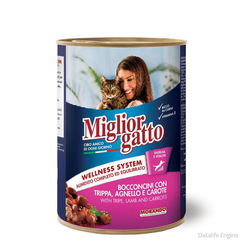 Кусочки из ягненка с морковью для кошек Miglior Gatto Agnello e Carote 405г Кишинев